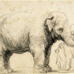 Charcoal sketch drawing of an elephant